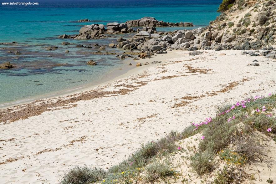 Porto Sa Ruxi, Villasimius - Sardegna