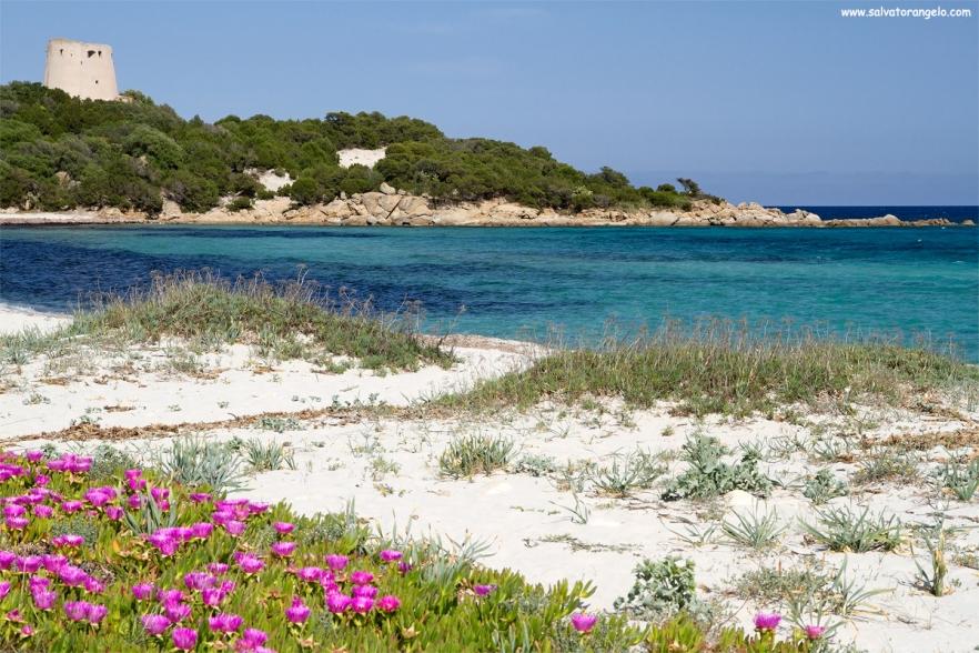 Cala Pira, Castiadas - Sardegna