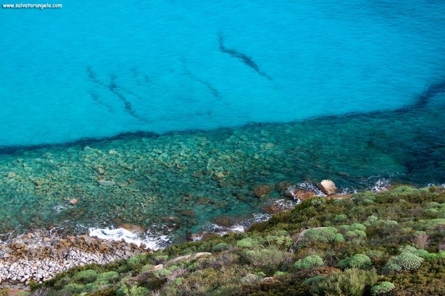 Trasparenze a Porto Giunco - Sardegna